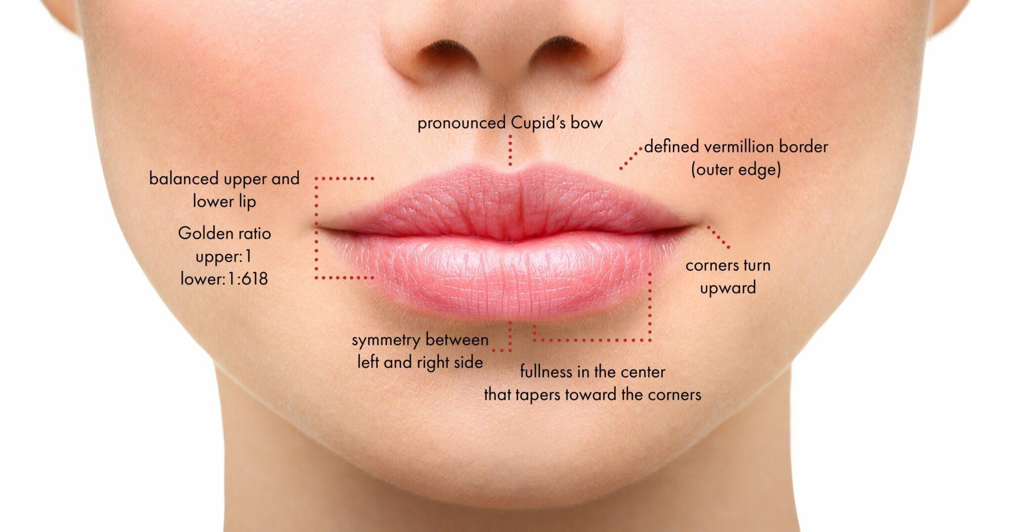 rellenos de labios charlotte carolina del norte